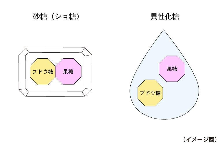 砂糖と異性化糖の違い.jpg