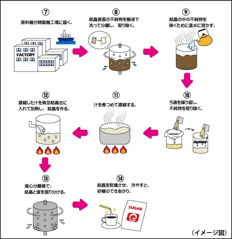 砂糖の作り方_02.jpg